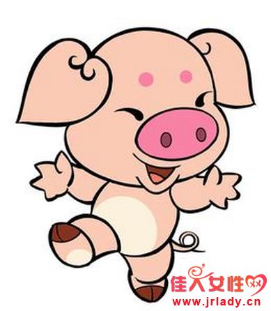 属猪的人2014运程详解