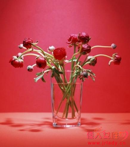 怎样利用鲜花帮你旺财运?