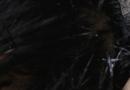 你的头发为何如此油腻 洗头过度并不好哦