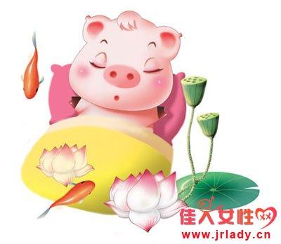 属猪人的性格