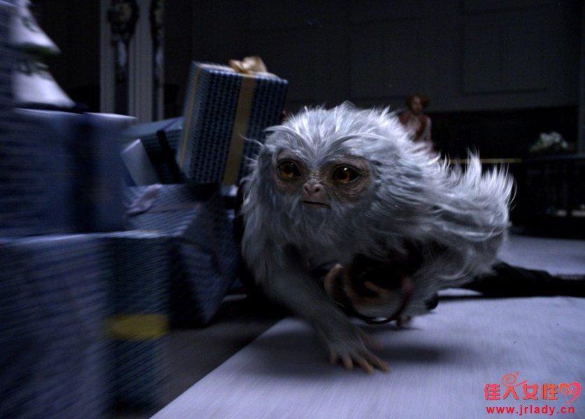 《神奇动物》再爆哈迷情怀 明日上映六看点正确开启魔法大门