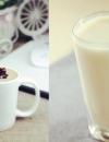 豆汁和豆浆的区别有哪些 豆浆怎么吃营养又养生