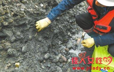 张献忠宝物出水 江口沉银遗址水下考古文物超万件
