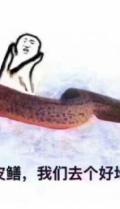 黄鳝琪琪回应黄鳝门事件视频在线看 黄鳝琪琪的微博地址在线一览