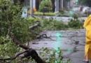 苏拉台风过后要注意什么,环境消毒要做好