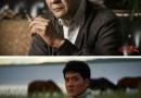 冯绍峰撞脸《人民的名义》育良书记 从此多了条戏路(图)