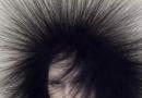 雾感黑沙宣发型图片 蒲公英造型像爆炸式