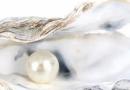 珍珠粉吃了有什么好处?专家回答珍珠粉可以长期服用吗