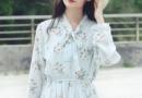 长袖款衬衫裙 秋季新款长袖衬衫裙