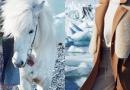 歌莉娅:极地冰岛,美出新暖感