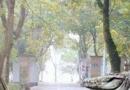 四川南部县鳄鱼养殖场78条鳄鱼集体出逃 政府下令:活要见鳄死要见尸