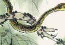 属蛇的今年多大 属蛇的人性格
