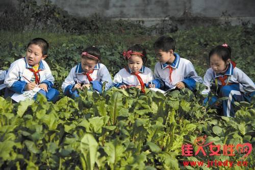上课期间不允许学生提出疑问 中国教育受到教育界诟病