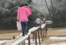学生踩独木桥上学 为什么踩独木桥危险吗