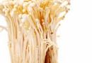金针菇的做法大全家常及金针菇饮食搭配宜忌大公开
