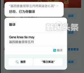基因膝盖领带五月是什么梗 基因膝盖领带五月用英语怎么说